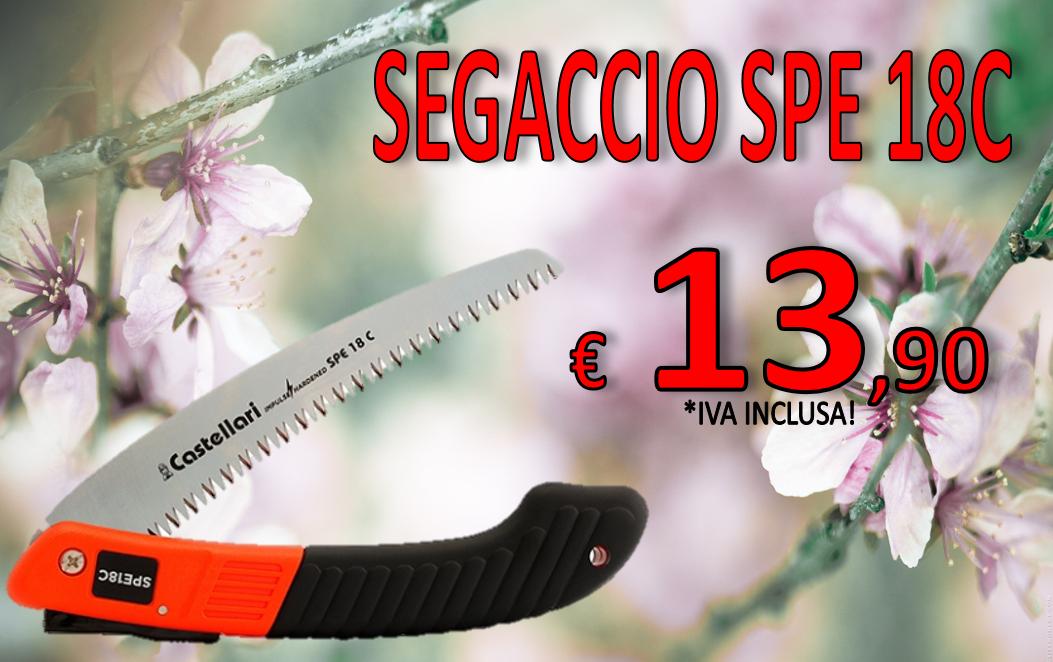 SEGACCIO CASTELLARI